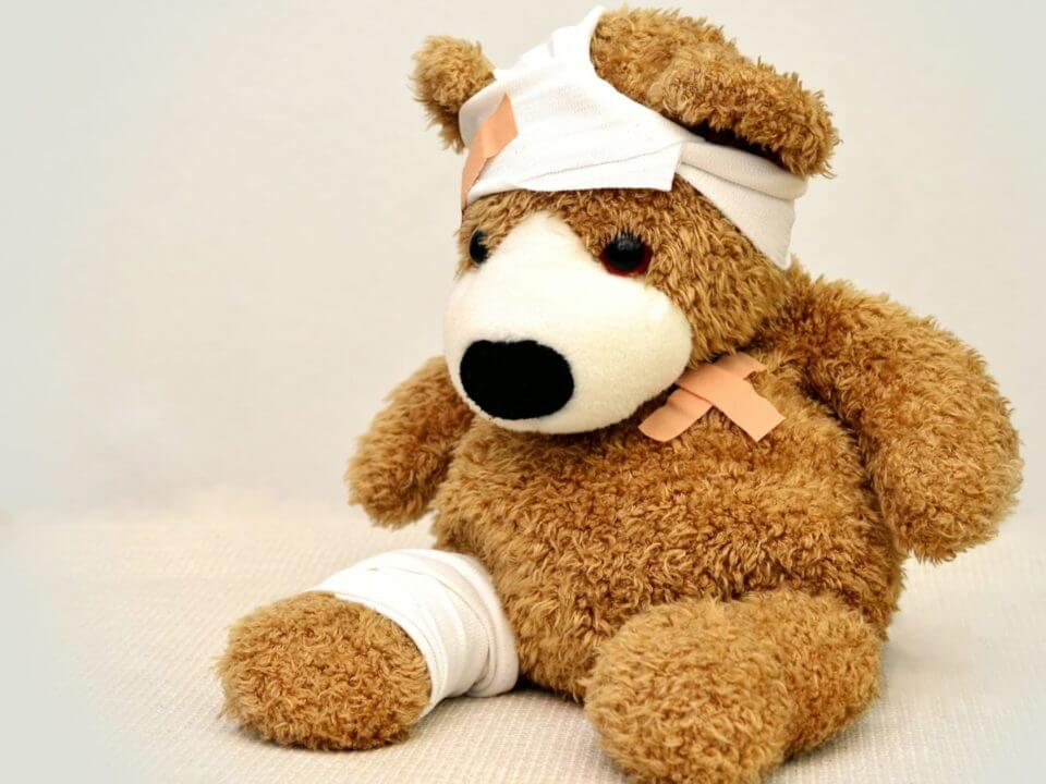 injured bear